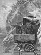 SOUTH AFRICA. Lord Randolph Churchill, train, antique print, 1891