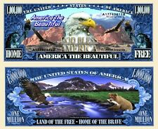 OUR AMERICA THE BEAUTIFUL DOLLAR BILL
