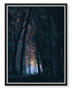 Dan McCarthy Crane in the Woods LE #/200 Poster Art Print Nature Outdoors