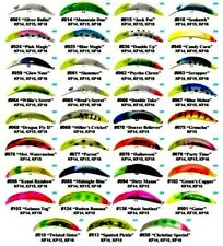 BRAD'S KILLER FISH FISHING LURE ( Choice of size & Color )