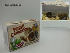 Junior Fossil  Box Collection Educational Gift Idea - Fossils, Cards, Magnifier