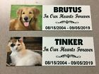 Custom Printed Memorial with YOUR PET PHOTO. Full Color. Dog, Cat, Any Pet. Urn.