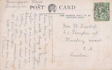 Mrs Helen Bastich, 61 Temple Street, 1917 'L Williams' JZ3.199