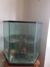 55gal Octagonal Fish Tank