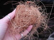BOTANICA LTD. Coconut Husk Fiber - great for orchid growing!