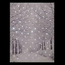 NATALE Inverno Neve scena LIGHT Up Fibre Optic Led Tela / Picture 40 x 30 cm