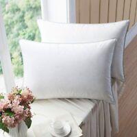 SNOWMAN Luxurious Goose Down Pillows - 100% Egyptian Cotton King/Queen Size