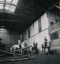 PARIS c. 1945 - Equitation Manège du Panthéon - Div 7091