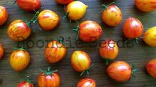 TOMATO 'Orange Sunrise Bumblebee' 25 seeds cherry vegetable garden bumble bee