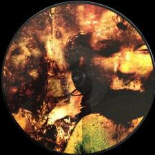 DESECRATION - Pathway to deviance Pic-LP (Copro, 2002) UK Death Metal limited