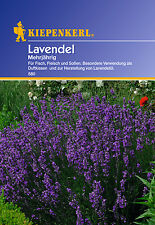 KIEPENKERL - Lavender 580 Perennial Lavender Seed