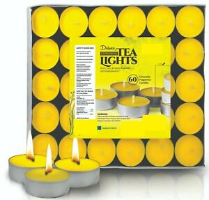 Deluxe Citronella Scented Tea Light Candles - 60 Pack - 4 hours