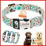 Personalisierte Hundehalsband mit Namen S-L Chihuahua Hundewelpen grosse Hunde