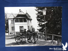 Vintage Horseless Carriage Flowers Plants Tourist House Vacation NEAT PHOTO