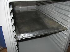 Thermoport Thermobox Thermobehälter  Rieber Kühlakku 1/1 GN Behälter