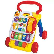2 in 1 Music Baby Walker