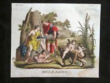 Meleagro,Atalanta,Calidone Incisione colorata a mano del 1820 Mitologia Pozzoli