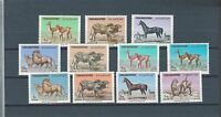 MIDDLE EAST Yemen mnh stamp set including airmails and postage due - fauna