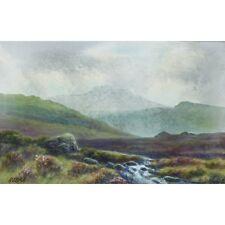 Original Signed Uframed 1920s Antique Fur Tor Dartmoor Watercolour Painting
