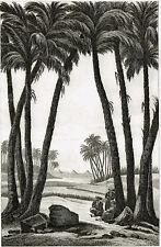 MEMPHIS 1839 ÄGYPTEN EGYPT ÉGYPTE ORIGINAL-STAHLSTICH CHAMONIN RENAUX