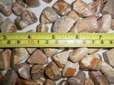 Tumbled Yellow Picture Jasper Stone 6 to 10 g small size pieces 1 Kilo KG Lot