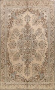 Muted Semi Antique Kirman Area Rug Distressed Hand-knotted Oriental Carpet 10x14