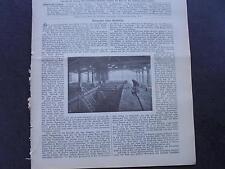 1899 Baugewerkszeitung 33 / Ziegelei Ringofen Fa Bock Berlin