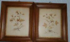 Pair Wood Framed Pressed Dried Flowers
