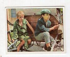figurina - PANINI PINOCCHIO 1972 - numero 260