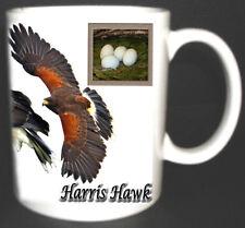HARRIS HAWK BIRD OF PREY MUG LIMITED EDITION SHOWING NEST EGGS BIRDS FALCONRY