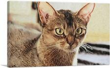 Artcanvas Abyssinian Cat Breed Closeup Canvas Art Print