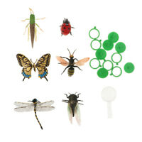 6pcs Plastic Insect Animal Model Figures & a Magnifier Kids Educational Toys