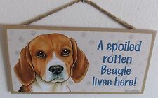 "A Spoiled Rotten Beagle Lives Here! 5"" X 10"" Wood Dog Sign Plaque"