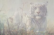 ART PRINT Monsoon- White Tiger (detail) John Seerey-Lester 26x36 Wildlife Poster