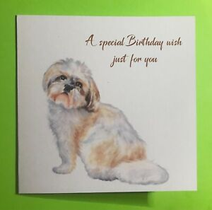 Lovely Shih tzu Birthday Card