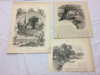 3 Vtg Art 1874 Boston MA. Etchings Jamaica Plains Fresh Pond Picturesque America
