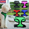 Adjustable Padded Pet Dog Harness Mesh Fabric Vest Puppy Lead Leash Clip Outdoor