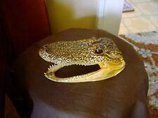 """6-1/2"""" Long Alligator Head Taxidermy"""