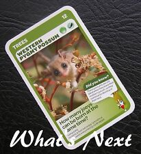 Woolworths<AUSSIE ANIMALS><Series 2 Baby Wildlife>CARD 12/36 TREES Pygmy Possum
