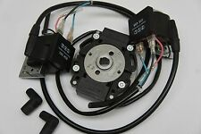 Twin Ignition System for 2 Cylinder 180° for Motobe / Benelli 250 Race DMon