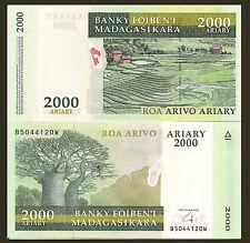 Madagascar P90b, 2000 Ariary,  2014, Baobab tree / Terraces HYBRID paper $7 CV!