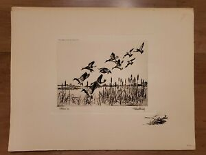 """Richard Bishop Etching """"Pitchin' in"""" Duck Photogravure Reproduction Print 1940"""