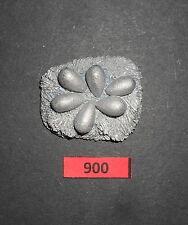 28mm WARHAMMER scala metallo Magic C1031a CLUTCH DELLE UOVA DI DRAGO SUL NIDO R 900