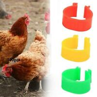 100X 16mm Colour Clip On Leg Band Rings For Chickens, Ducks, Hens, Poultry X5V6