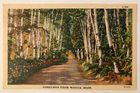 Greetings From Waseca, Minnesota MN Postcard - 1934