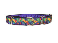 "Handmade Martingale dog collar 1"" greyhound lurcher whippet. Parrot Frenzy."