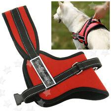 Dog Harness Adjustable Support Pet Dog Control Vest Soft Padded Red M