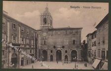 Marche. Senigallia (Ancona). Palazzo Municipale. Cartolina viaggiata nel 1920.