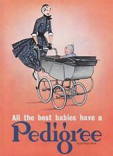 "1955 Print ad for PEDIGREE PRAMS 30cm x 23.5cm (12"" x 9½"")"