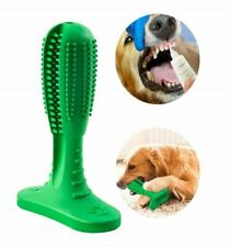 New listing Large Size toothbrush stick dog + Pack of 2 Rubber Balls bundled ship from Usa